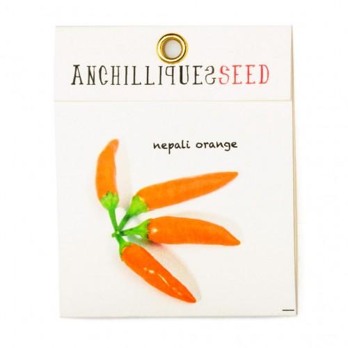Nepali orange