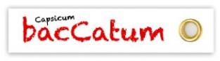 Capsicum Baccatum