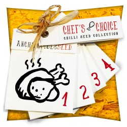 SET 4x CHEF'S CHOICE